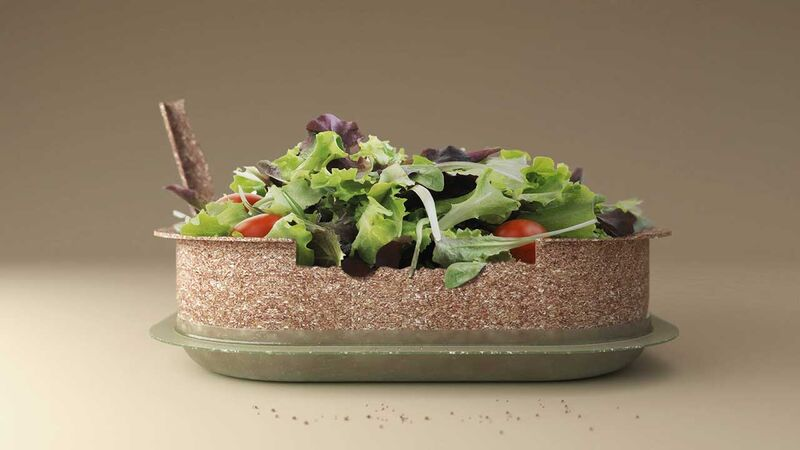 Edible Food Containers