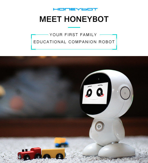 Educational Family Robots