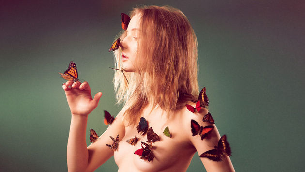 Butterfly-Clad Campaigns