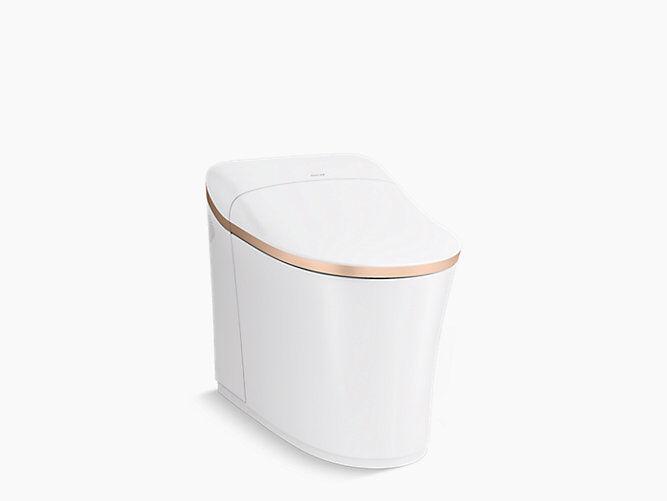 Comfort-Focused Customizable Toilets