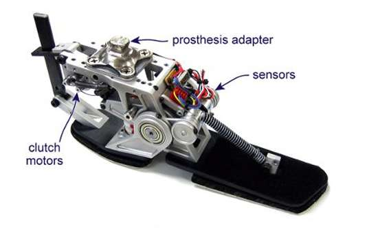 Energy-Recycling Prosthetics