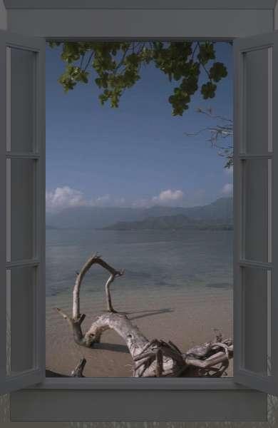 Virtual Naturescapes