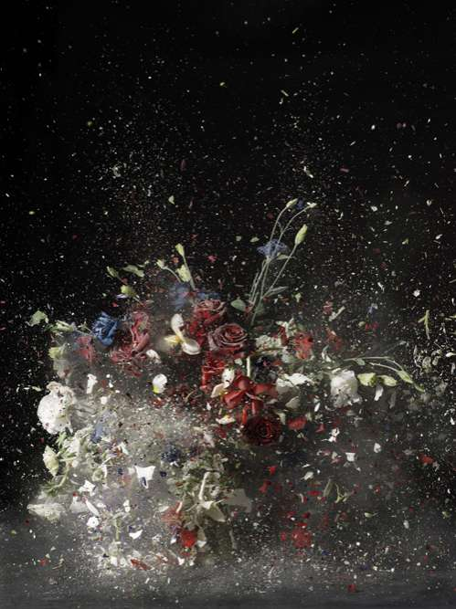 Exploding Flowers Ori Gersht Is Inspired By A 19th