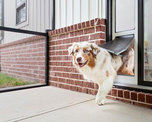 Weatherproof Pet Doors