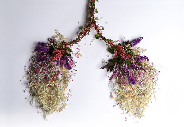 Blooming Human Organ Sculptures