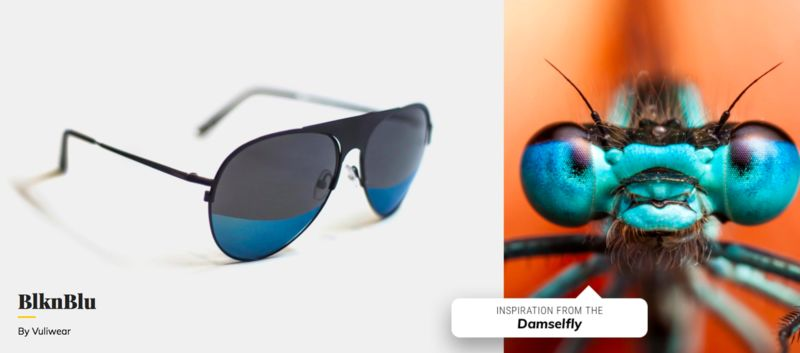 Insect-Inspired Eyewear