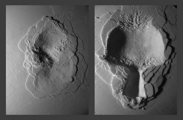 Facial Crater Photography