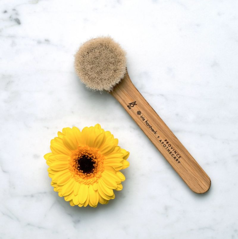 Daily Facial Dry Brushes - Province Apothecary's Product Motivates the User's Lymphatic System (TrendHunter.com)