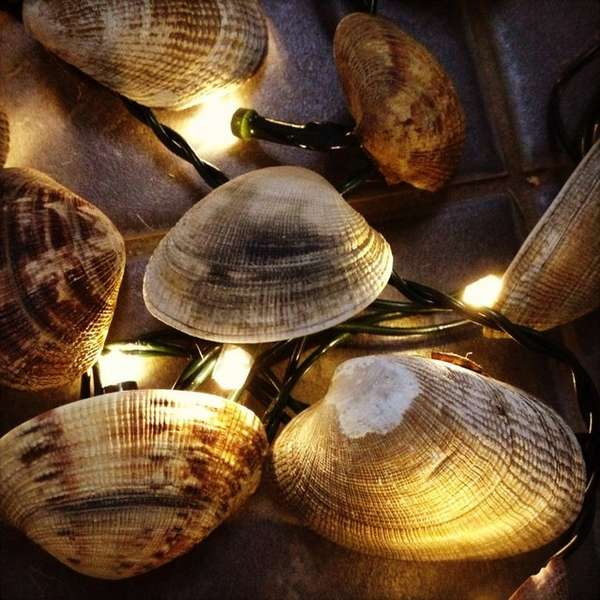 Upcycled Shellfish Lights