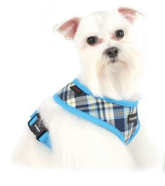 Chic Canine Accessories