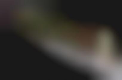 Fashion Week Soundtrack