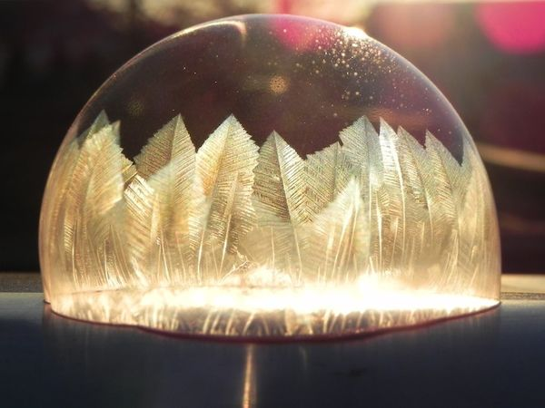 Feathered Frozen Bubbles
