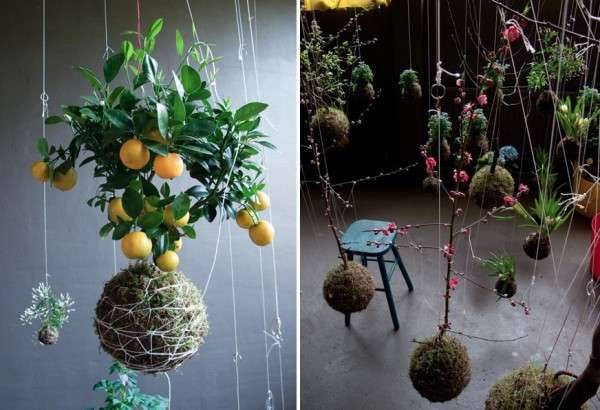 Suspended String Greenery