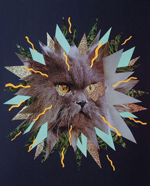 Psychedelic Feline Portraits