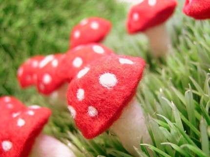 Felted Mushrooms