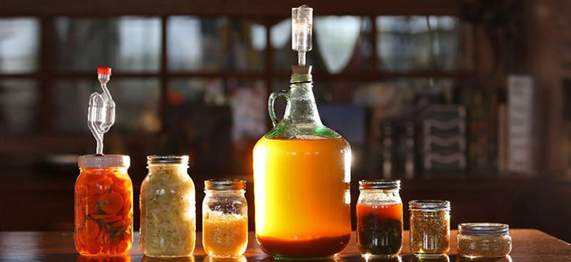 Fermented Food Festivals