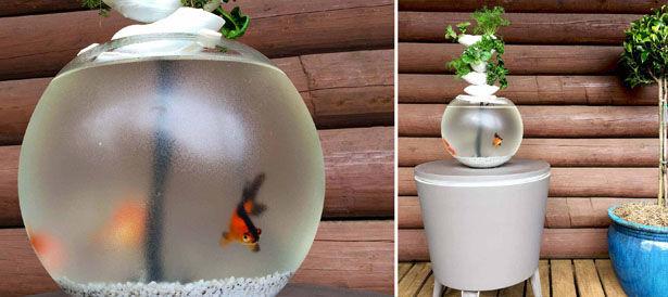 3D-Printed Aquaponic Aquariums
