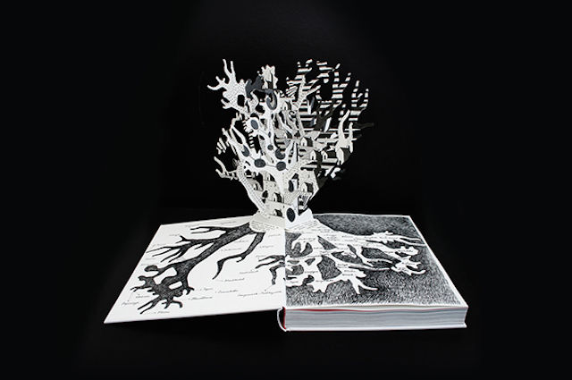 Flemish Pop-Up Books