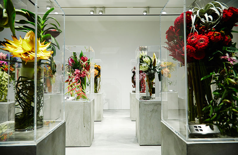 Symbolic Botanical Exhibits