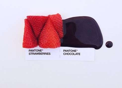 Edible Color Swatch Photography