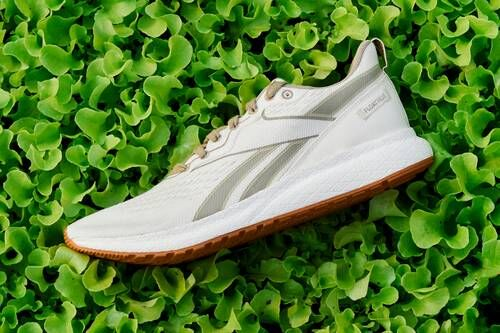 Certified Plant-Based Sneakers