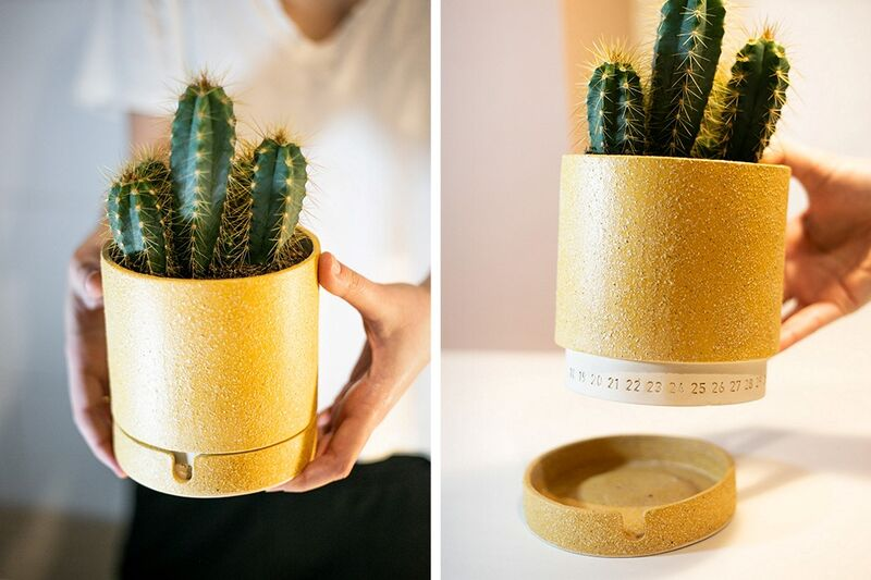 Cute Calendar-Paired Planters