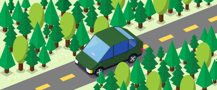 Green Rideshare App Initiatives
