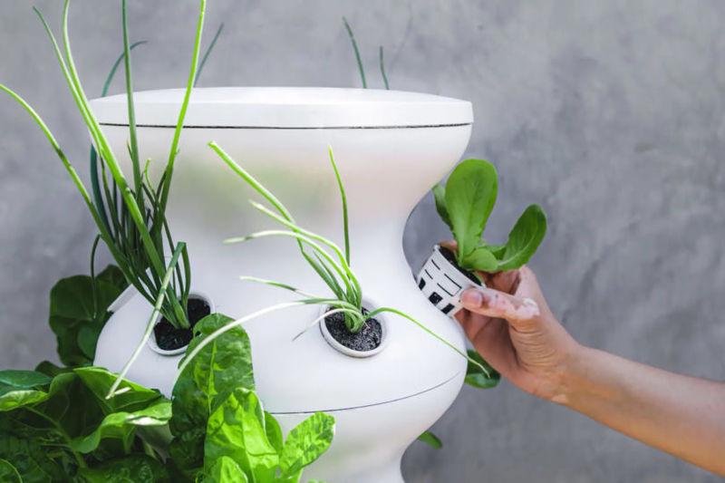 Self-Watering Gardening Towers