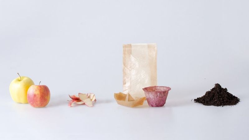 Naturally Fermented Containers