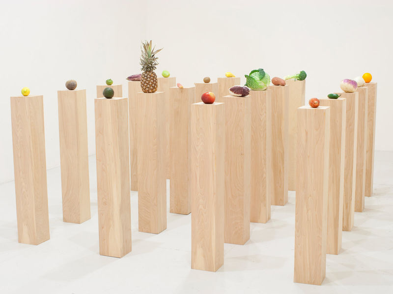 Edible Fruit Installations