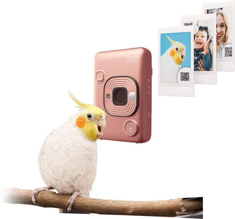 Digital Audio-Accompanying Cameras