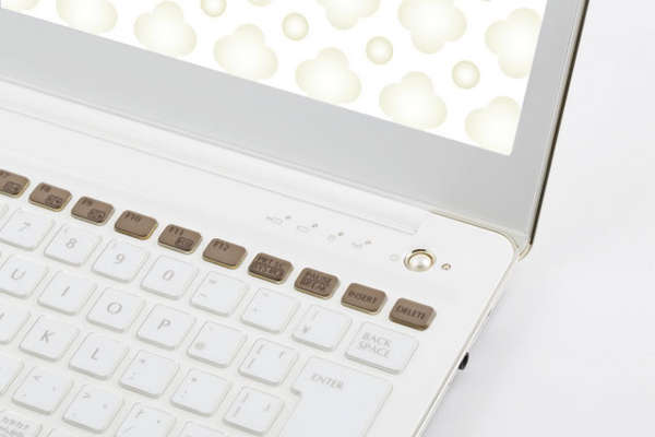 Blossoming Dainty Laptops