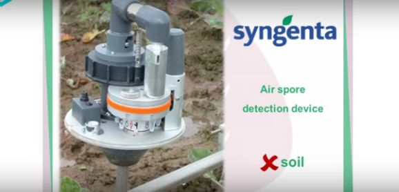 Fungus-Monitoring Systems