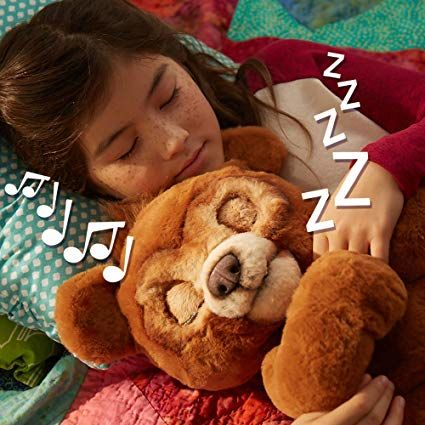 Interactive Plush Bear Toys