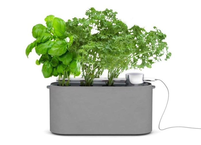 Effortless Gardening Kits