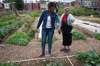 Social Senior Farms