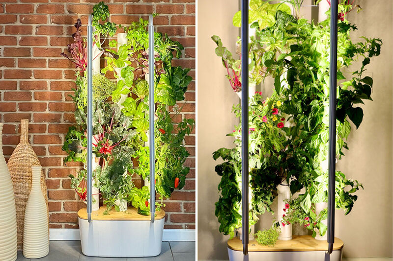 All-in-One Indoor Garden Systems