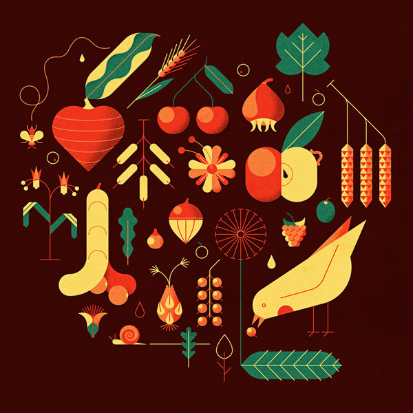 Nature-Inspired Geometric Illustrations