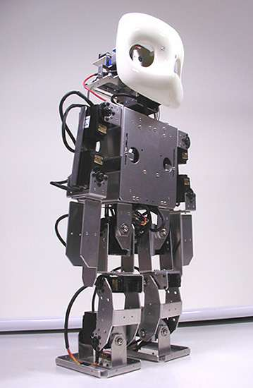 Ghost-Faced Robots