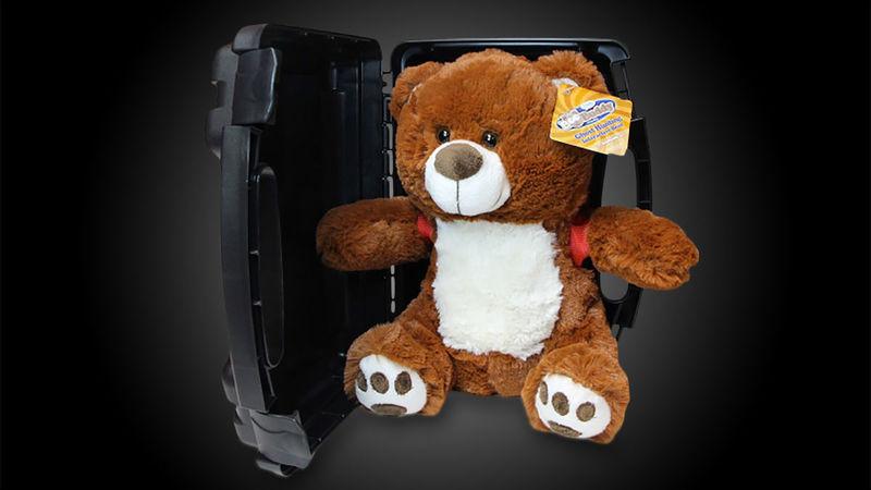Ghost-Detecting Teddy Bears