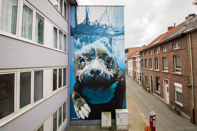 Giant Underwater Dog Murals