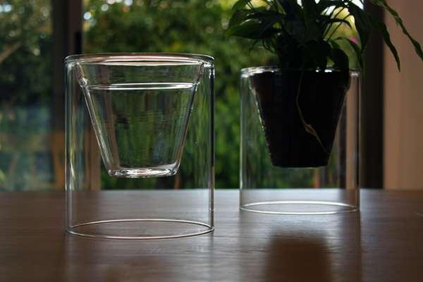 Clear Plant Pots