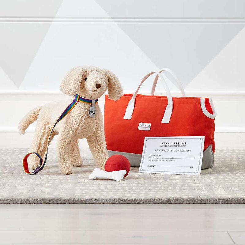 Pet Adoption-Themed Toys