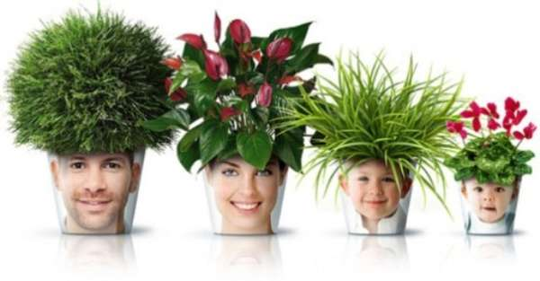 Personified Flower Pots