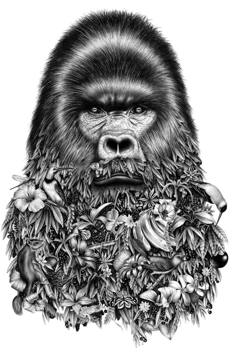 Bearded Animal Illustrations