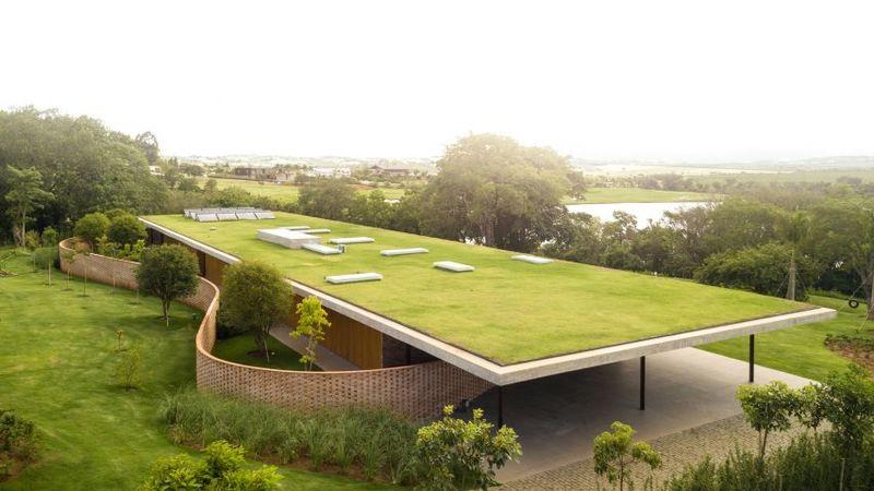 Minimalist Grassy Roofs
