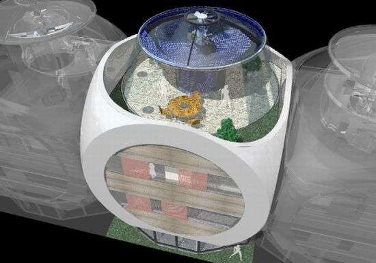 Cube-Shaped Eco Architecture