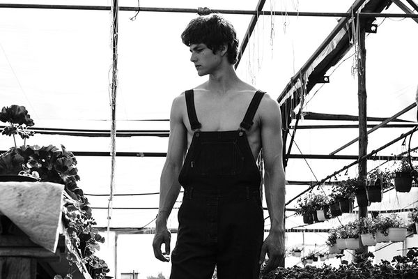Striking Gardener Editorials