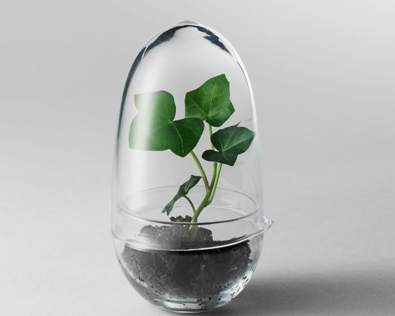 Miniature Greenhouse Pods