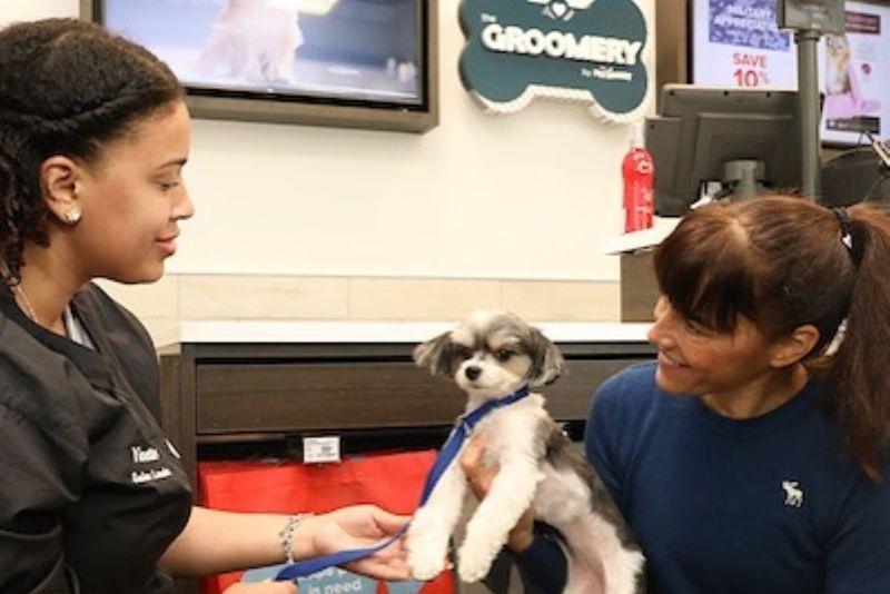 Full-Service Pet Salons